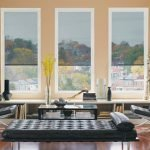 Window Covering for Your Office